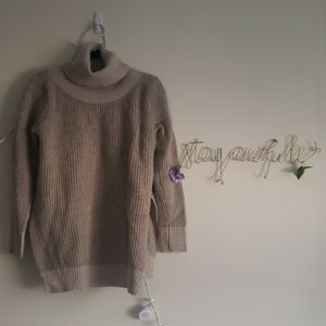 Roots Knit Turtleneck Sweater
